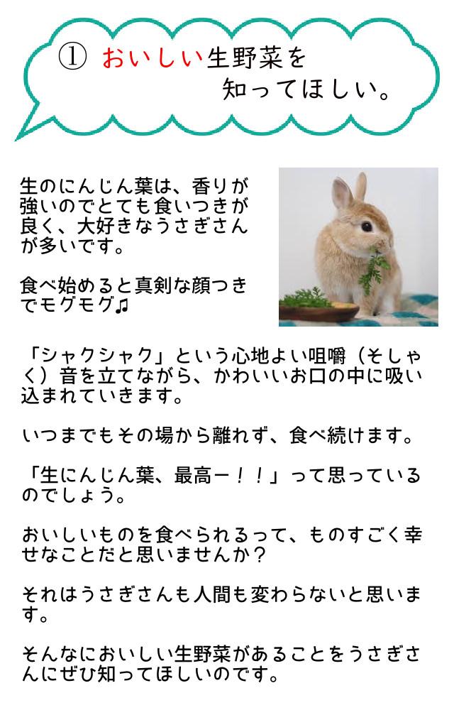 おいしい生野菜を知ってほしい。