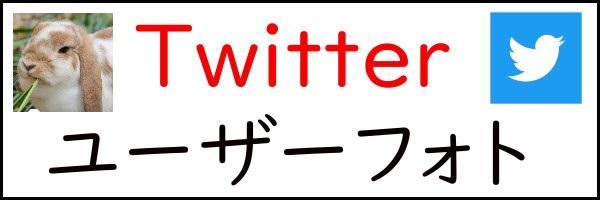 うさぎ畑,ユーザーフォト,Twitter